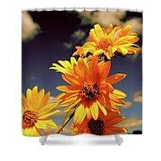 Sunflower Skies Shower Curtain