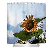 Sunflower Sky Shower Curtain