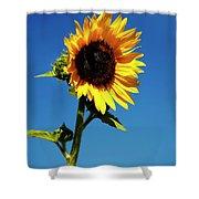 Sunflower Stand Alone Shower Curtain