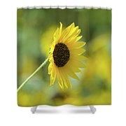 Sunflower Summer Shower Curtain