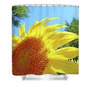 Sunflower Sunlit Art Print Canvas Sun Flowers Baslee Troutman Shower Curtain