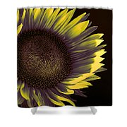 Sunflower Dawn Shower Curtain