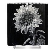 Sunflower Sutra Shower Curtain