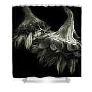 Sunflower Tango Shower Curtain