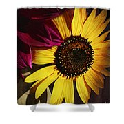 Sunflower With Dahlia Shower Curtain