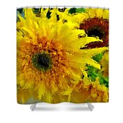 Sunflowers - Light And Dark Shower Curtain