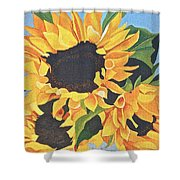 Sunflowers #3 Shower Curtain