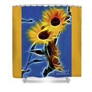 Sunflowers-4969-fractal Shower Curtain