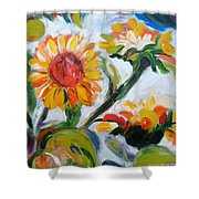 Sunflowers 5 Shower Curtain
