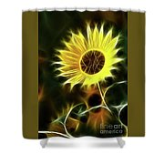 Sunflowers-5200-fractal Shower Curtain