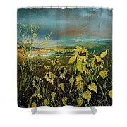 Sunflowers 562315 Shower Curtain