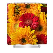 Sunflowers And Red Mums Shower Curtain