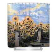 Sunflowers At Rest Stop Near Great Sand Dunes Shower Curtain