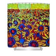Sunflowers Field At Sunrise Shower Curtain