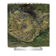 Sunflowers Gone To Seed Paris, August - September 1887 Vincent Van Gogh 1853  1890 Shower Curtain