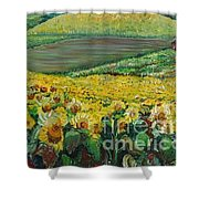 Sunflowers In Provence Shower Curtain by Nadine Rippelmeyer