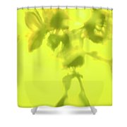 Sunflowers In The Sun. Shower Curtain