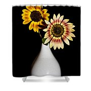 Sunflowers On Black Background And In White Vase Shower Curtain