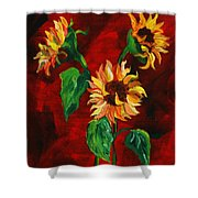 Sunflowers On Rojo Shower Curtain