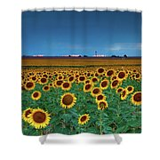 Sunflowers Under A Stormy Sky By Denver Airport Shower Curtain