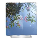 Sunglasses Required Shower Curtain