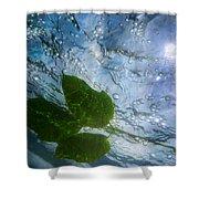 Sunleaf No.2 Shower Curtain