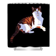 Sunlight And Shade Shower Curtain