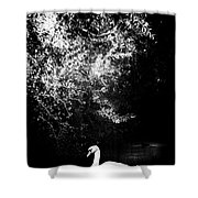 Sunlight And Swan  Shower Curtain