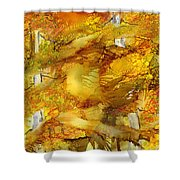 Sunlight Dancing In The Aspen Forest Shower Curtain