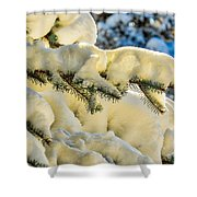 Sunlight In Snow Shower Curtain