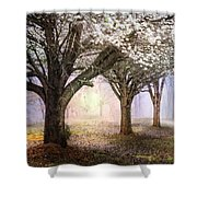 Sunlight In The Meadow Shower Curtain