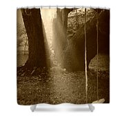 Sunlight On Swing - Sepia Shower Curtain