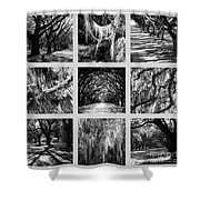 Sunlight Through Live Oaks Collage Shower Curtain