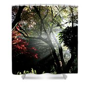Sunlight Through The Tree In Misty Morning 1. Shower Curtain