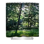 Sunlight Through Trees And Fence Shower Curtain
