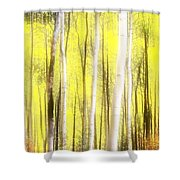 Sunlit Aspen Grove Shower Curtain