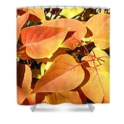 Sunlit Fall Lilac Shower Curtain