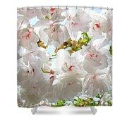 Sunlit Flowers Art Prints White Tree Blossoms Baslee Troutman Shower Curtain