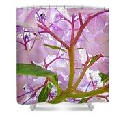 Sunlit Hydrangea Flowers Garden Art Prints Baslee Troutman Shower Curtain