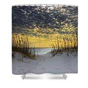 Sunlit Passage Shower Curtain