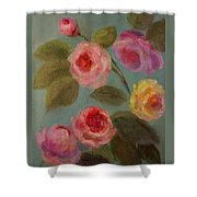 Sunlit Roses Shower Curtain
