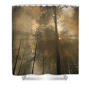 Sunlit Smoke Whispers The Firefighters Shower Curtain