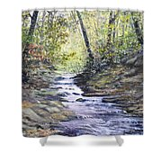 Sunlit Stream Shower Curtain