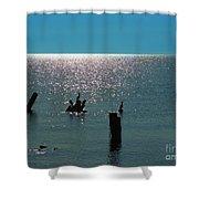 Sunlit Waters Shower Curtain