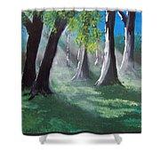 Sunlit Woods Shower Curtain