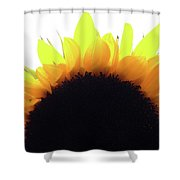 Sunflower Rise Shower Curtain