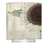 Sunny Albino Sunflower Shower Curtain