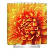 Sunny Dahlia Shower Curtain