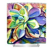 Sunny Day Succulent Shower Curtain