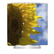 Sunny Faces And Blue Skies Shower Curtain